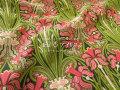 【コットン シャーティング】 ≪YUWA≫ リファインド加工 ミュールズコレクション 『 I  r i s ◇ アイリス 』 コーラルピンク×リーフグリーン