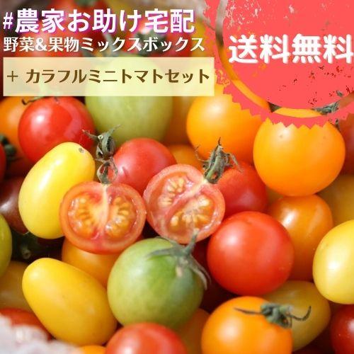 農家お助け!宅配 野菜&果物ミックスボックス<カラフルミニトマトセット>