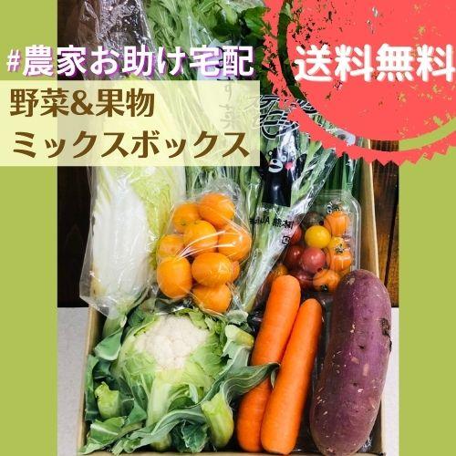 農家お助け!宅配 野菜&果物ミックスボックス<ベーシック>