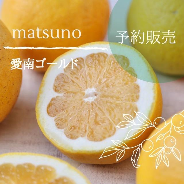 【送料無料】《愛媛県産》愛南ゴールド 約10kg(M/L)※ご予約品