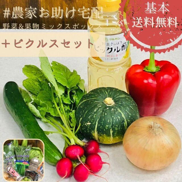 農家お助け!宅配 野菜&果物ミックスボックス<ピクルスセット>