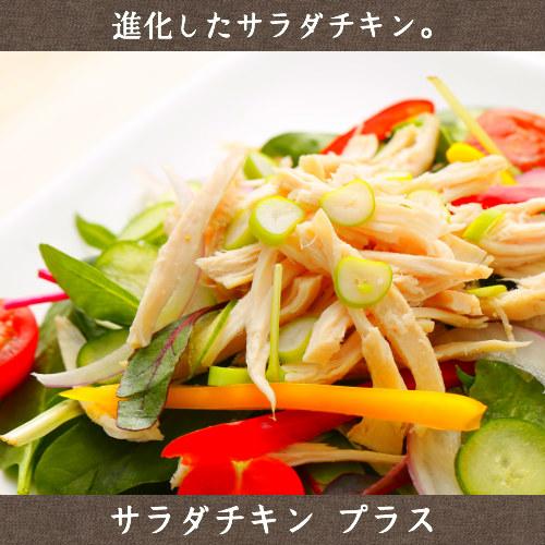 送料無料 宮崎県産若鶏 サラダチキン プラス 120g×2
