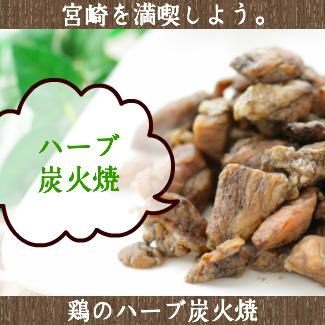 送料無料 宮崎名物焼き鳥 鶏のハーブ炭火焼50g×2 おつまみ 珍味