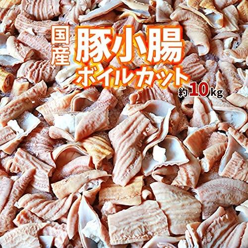 国産 豚 小腸(ショウチョウ/白モツ/白もつ/ホルモン/ほるもん/豚もつ) カット済み ボイル下茹で済み 約10kg 業務用