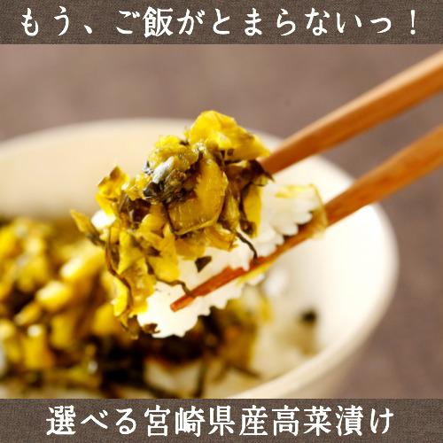 送料無料宮崎県都農町産 選べるからし高菜200g×3パック