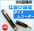 ベセトジャパン 仕掛録音30日ペン型ボイスレコーダー VR-P005N