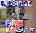 【我が家の防犯対策!】サンコー 自動録画防犯カメラ RD1006AT