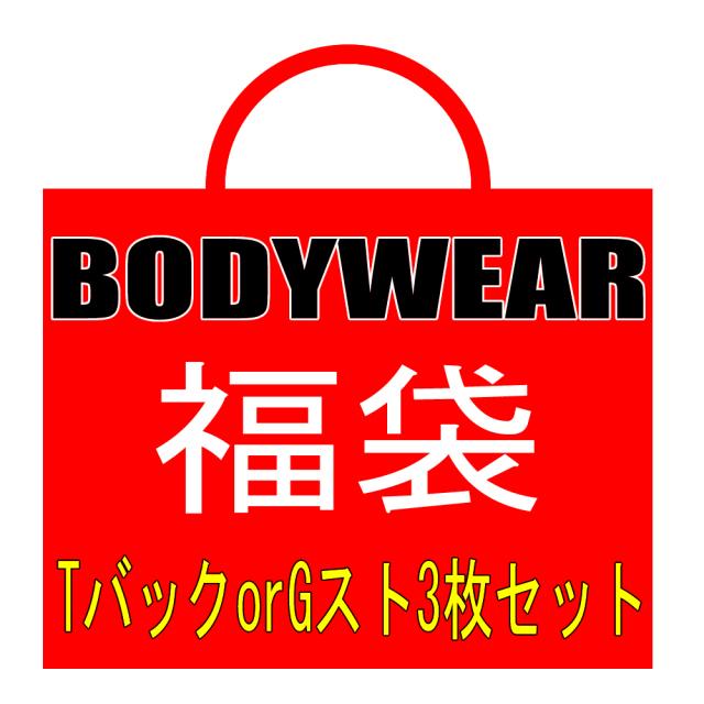 福袋 BODYWEAR TバックorGスト 3枚セット bwtg3
