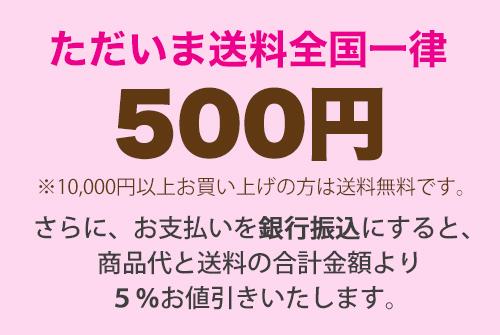 送料500円キャンペーン