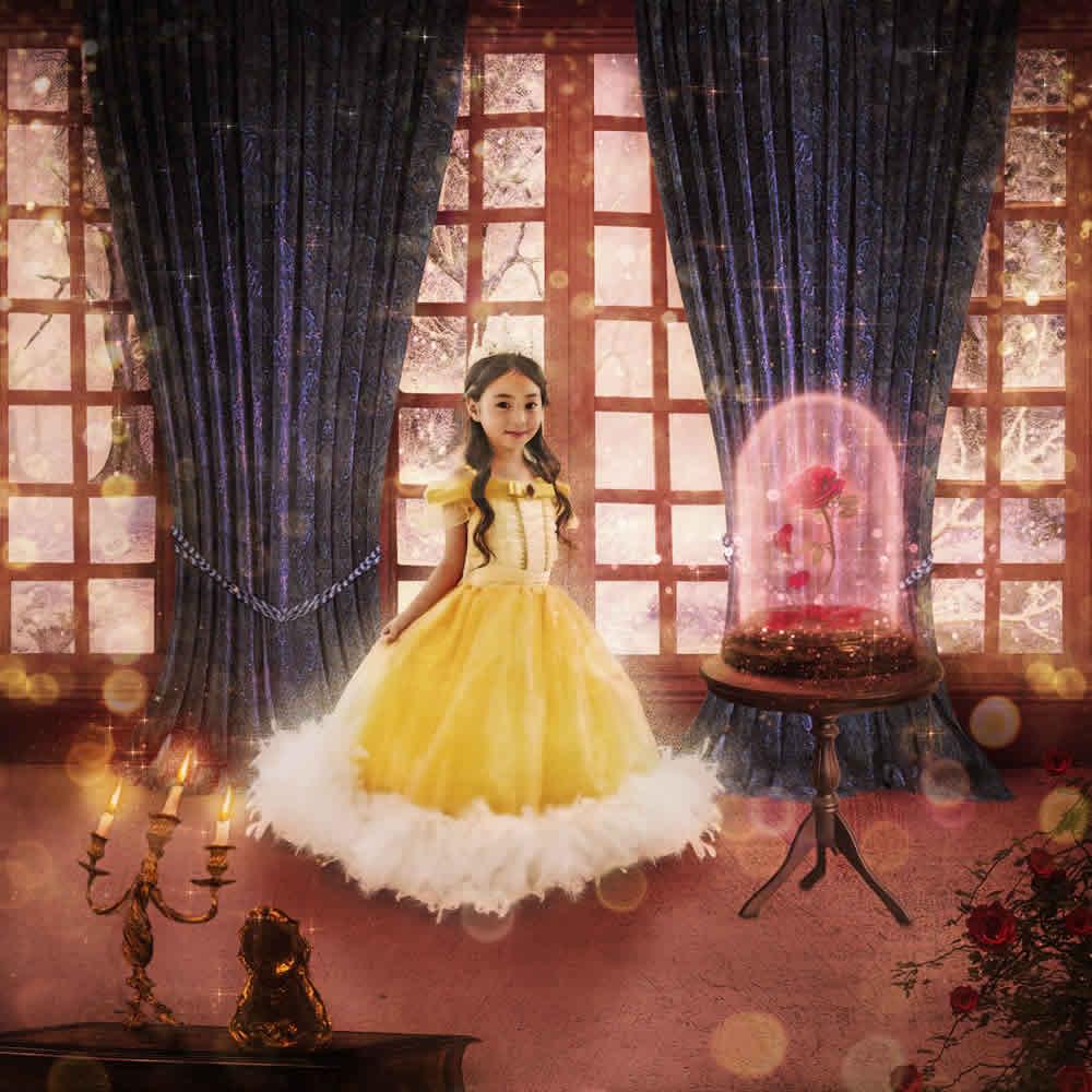プリンセスプレミアムフォトアート