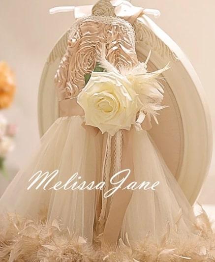 夢のようなシャンパンフェザーとレースのフラワーガールドレス「Dreamy Champagne Feathers And Lace Flower Girl Dress」1歳から6歳