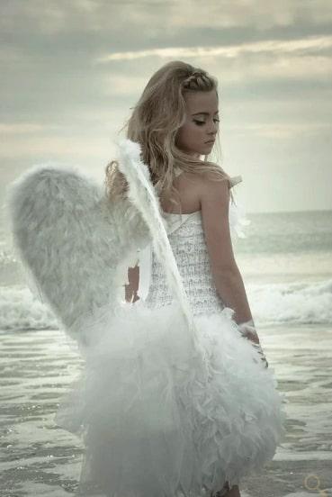 天使の羽 <ホワイト> エンジェルフェザーウィングス