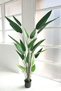 ストレリチア   人工観葉植物 造花 インテリア