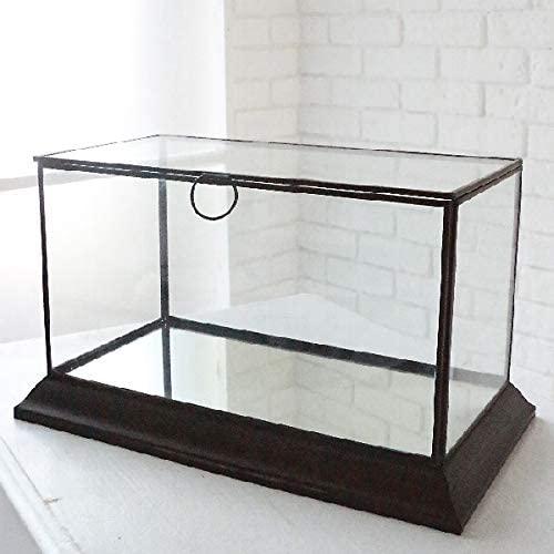 レクタングル・ミラーテラリウム  アンティーク ガラスケース  ディスプレイ