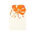 ポストカード ゆり柄(88529006)