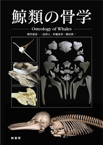 鯨類の骨学