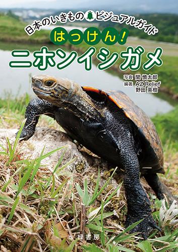 日本のいきものビジュアルガイド はっけん!ニホンイシガメ