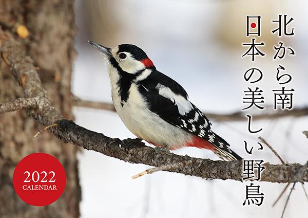 北から南 日本の美しい野鳥カレンダー2022(壁掛け)