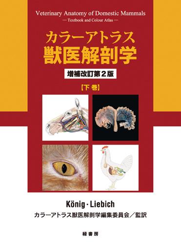 カラーアトラス獣医解剖学 増補改訂第2版 下巻