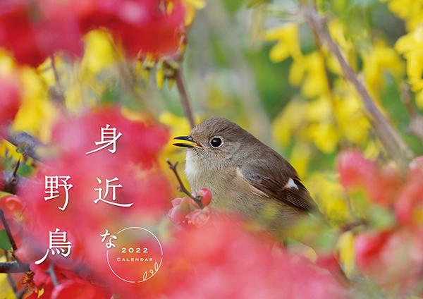 身近な野鳥カレンダー2022(壁掛け)