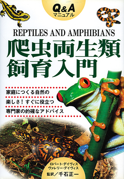 Q&Aマニュアル爬虫両生類飼育入門