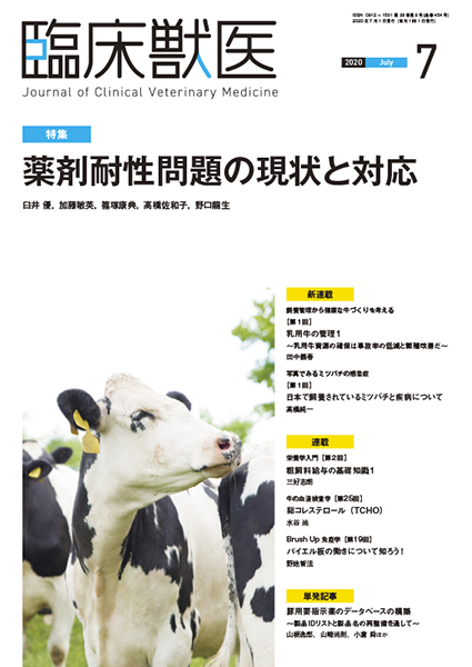 臨床獣医 2020年7月号
