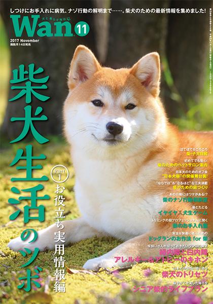 Wan 2017年11月号 10/13発売