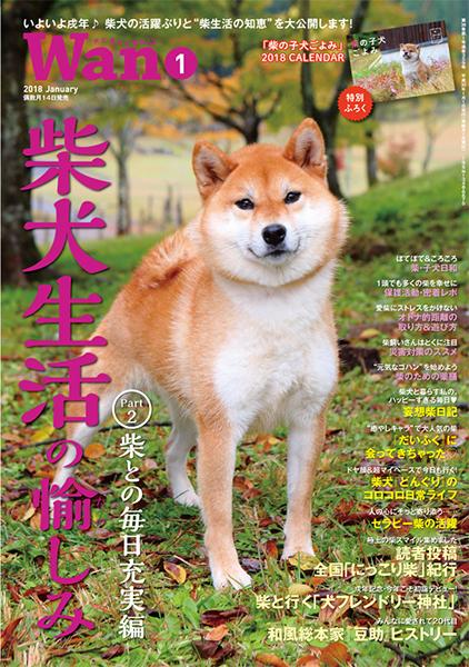 Wan 2018年1月号 12/14発売