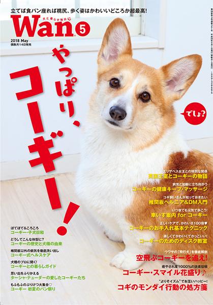 Wan 2018年5月号 4/13発売