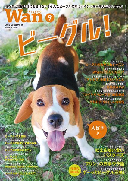 Wan 2018年9月号 8/16発売