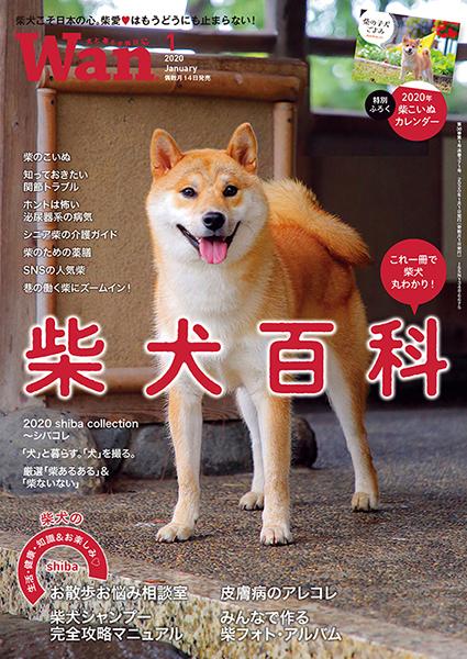 Wan 2020年1月号 12/13発売