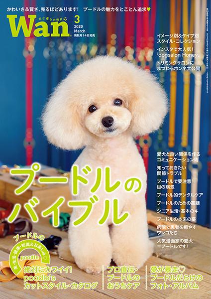 Wan 2020年3月号 2/14発売