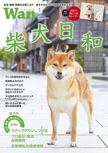 Wan 2021年1月号 12/14発売