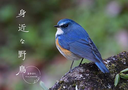 身近な野鳥カレンダー2021(壁掛け)