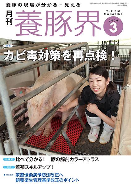 養豚界 2020年3月号