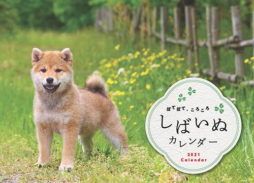 しばいぬカレンダー2021(卓上)