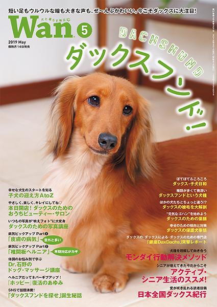 Wan 2019年5月号 4/12発売