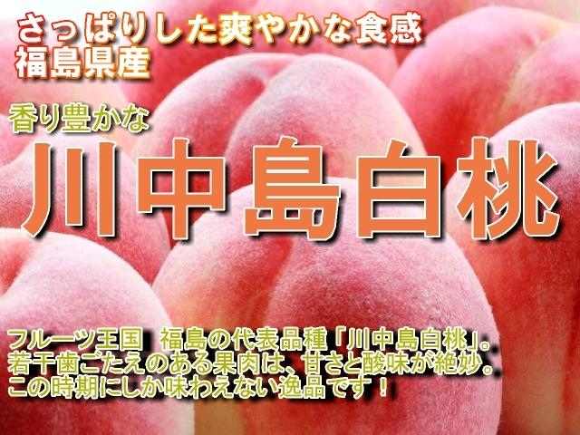 福島県 桃 川中島白桃