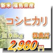 新米【予約特典つき送料無料】令和元年 福島県産コシヒカリ 白米5Kg