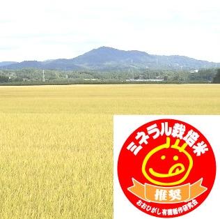 ミネラル栽培 コシヒカリ