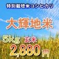 【送料無料】29年 大輝地米 (福島県 特別栽培米コシヒカリ) 【石抜玄米 5キロ