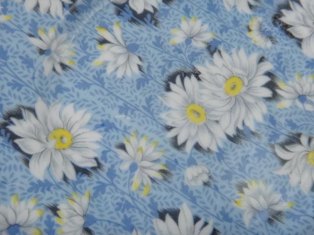 シェリー ブルーデイジー ティートリオ SHELLEY Blue Daisy