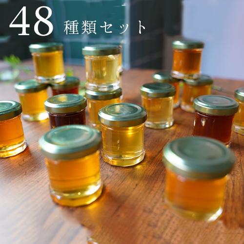 片足蜂蜜沼。ハニーハンター厳選贅沢蜂蜜48種セット