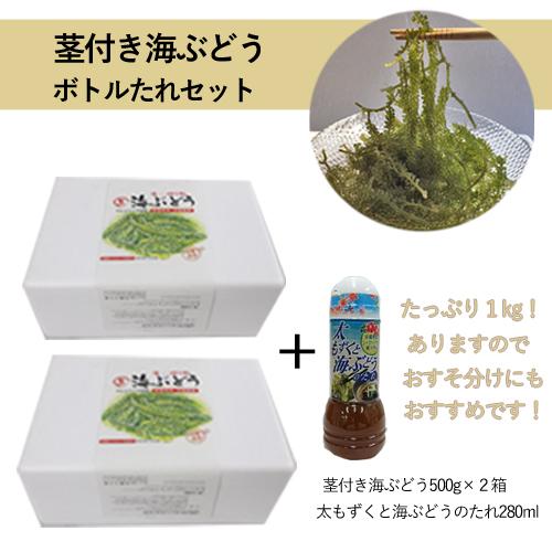 茎付き海ぶどうセット