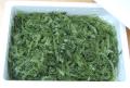 沖縄産茎付き生海ぶどう500g