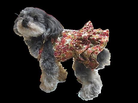 ワインレッド花柄サロペットスカート