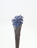 ボタンフラワー ロイヤルブルー 30160-600