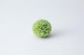 ソーラーポンポン菊 グリーン 32790-700