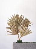 パームサンリーフ N 54050-000