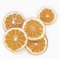 オレンジスライス N